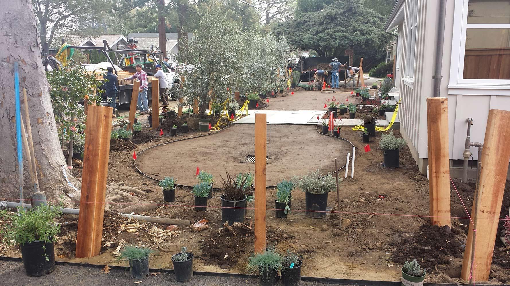 Menlo Park Landscape Design Build