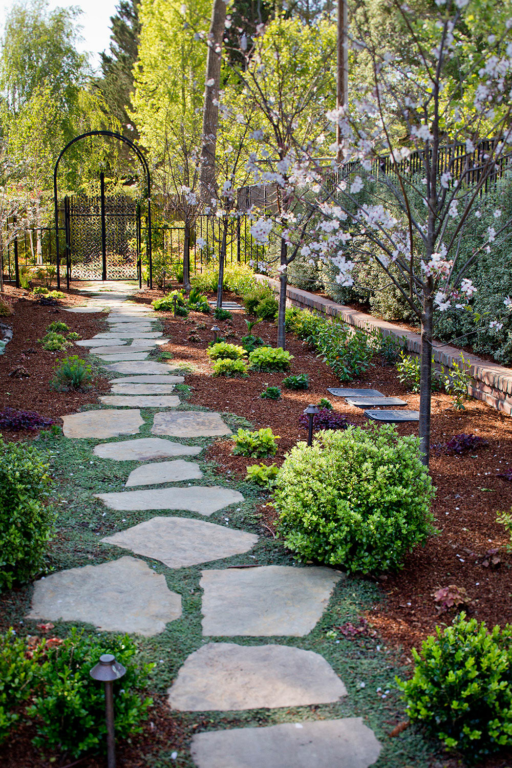 How to plant ground cover between pavers - Image1