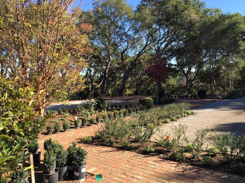Woodside Landscape Contractor